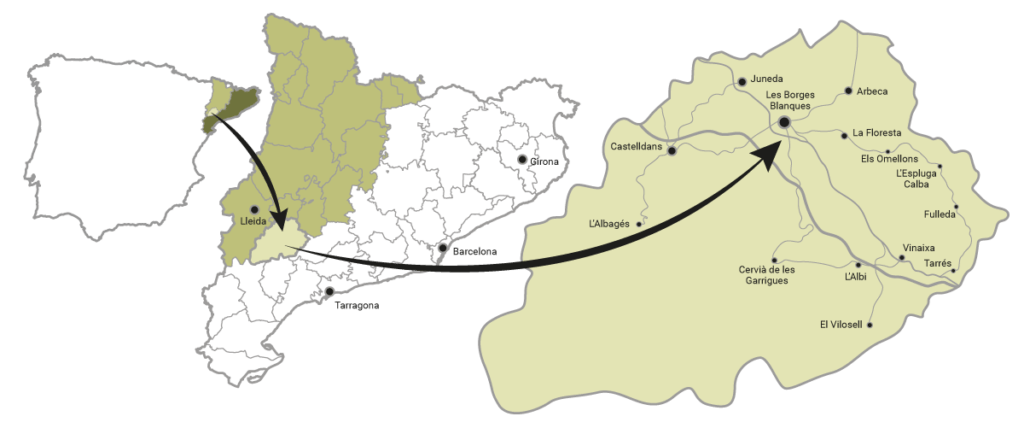El-Terrall---Mapa-de-situacio